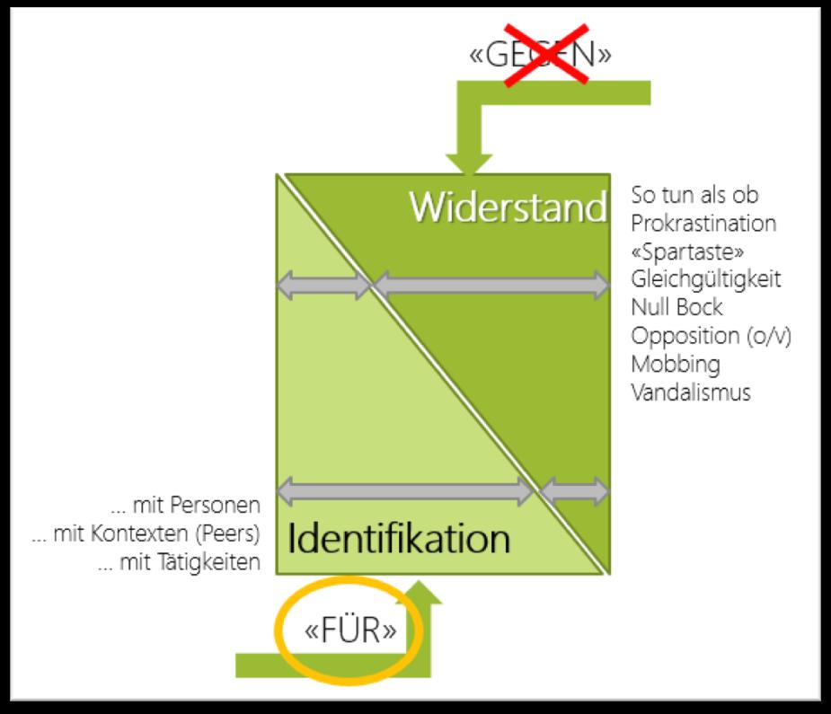 widerstand-identifikation